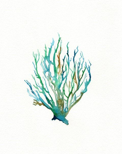 No. 11 Sea Coral  / Teal / Aqua / Yellow Ochre / by kellybermudez, $20.00