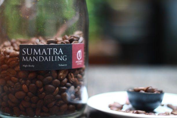 Kopi arabika Mandailing atau lebih dikenal dengan Mandeling Coffee menjadi salah satu komoditas kopi Sumatra yang paling diincar kalangan eksportir. Alasan utamanya ialah karakter rasa yang seolah tidak ada duanya dibandingkan kopi dari belahan dunia manapun.