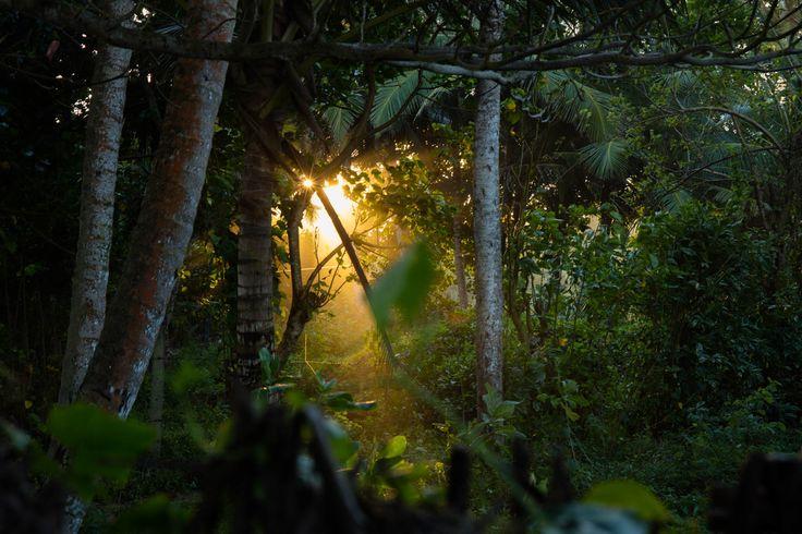 Evening inspiration, Sri Lanka behind the scenes. Inspiraci můžete najít i za domem.