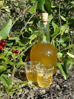 Liqueur de fleurs de salsepareille