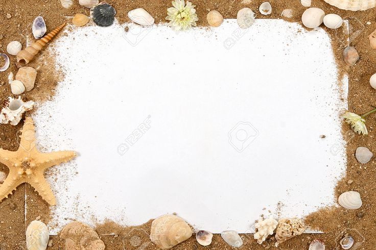 26898480-Border-summer-shells-frame-composition-over-beach-sand-background-Stock-Photo.jpg (1300×866)