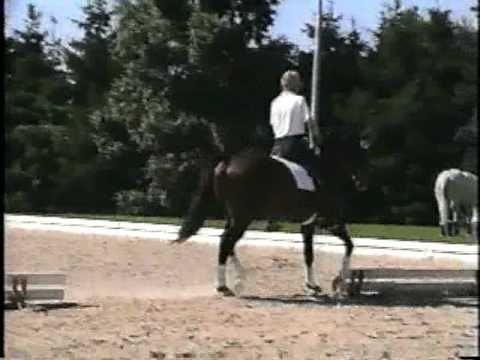 Dr. Reiner Klime with a lovely, calm warmup in a snaffle, filmed and narrated by Bill Woods.