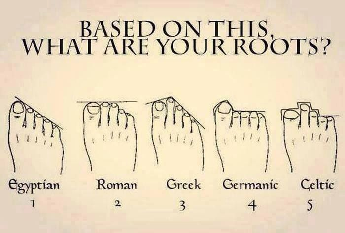 Based on this, are your roots Egyptian, Roman, Greek, Germain, or Celtic?