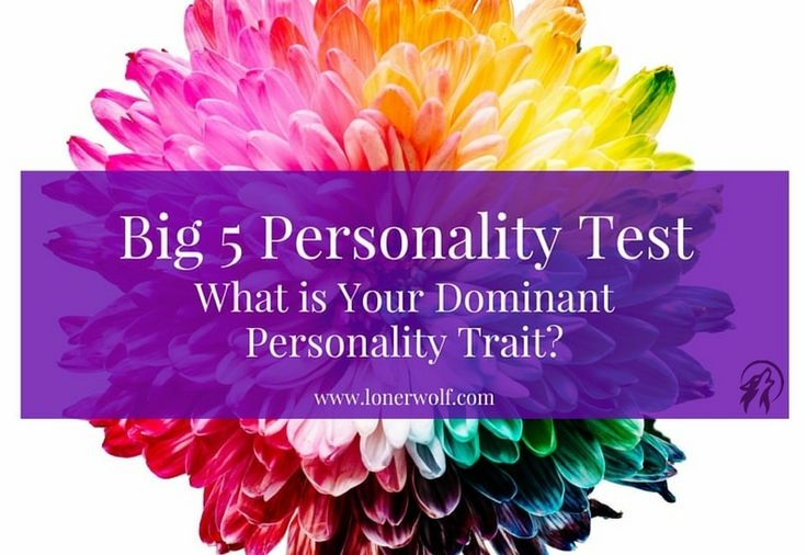 What are you most dominant personality dimensions? Find out in our comprehensive free Big 5 Personality test that features 30 questions!