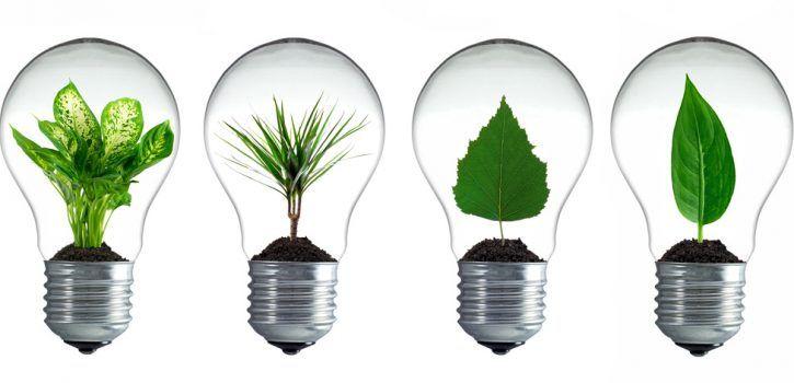LED statt Glühbirne - Glühbirnenersatz finden
