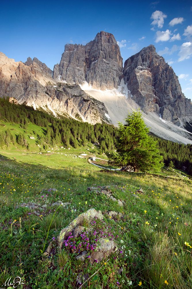 Just before the sunset, Mt. Pelmo, Dolomites, Italy---I'm born near these mountain. A fantastic world, beleve me!!!
