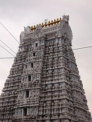 Tirupati - Andhra Pradesh - India