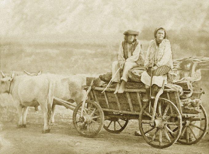 FOTOGRAFIA K.XIX WIEKU WYKONANA PRZEZ JULIUSZA DUTKIEWICZA W KOŁOMYI - PARA HUCULSKA NA WOZIE.