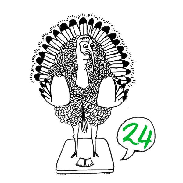 This is the Karo Rigaud 2014 Advent Calendar…#24 - Truthahn - Dindon - Turkey