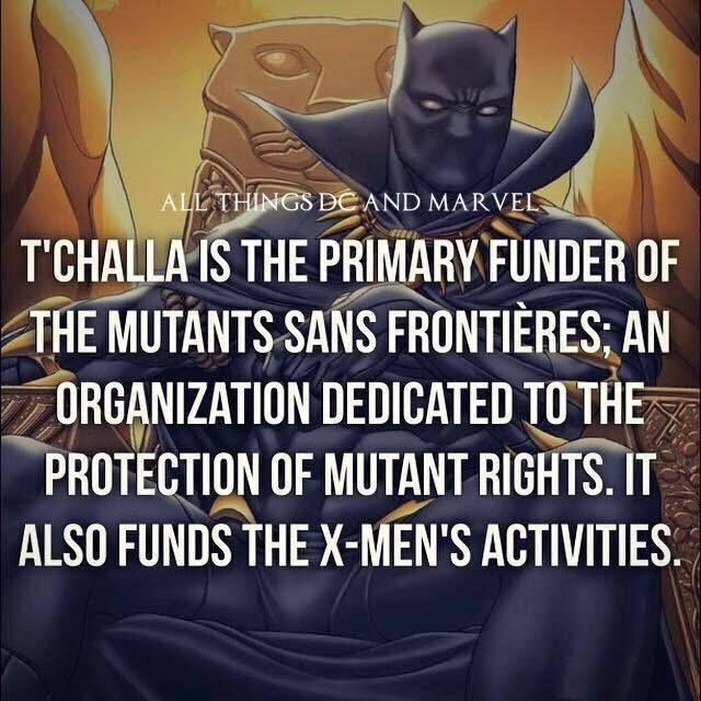 Love Each Other When Two Souls: Best 25+ Marvel Universe Ideas Only On Pinterest