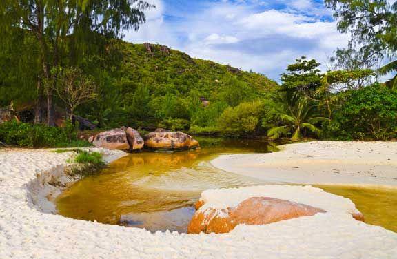 Rainforest rivers, the Seychelles