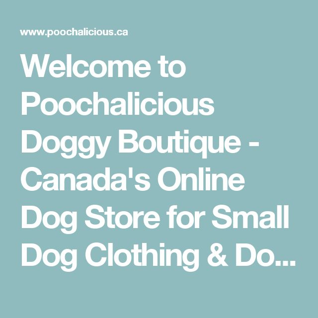 Welcome to Poochalicious Doggy Boutique  - Canada's Online Dog Store for Small Dog Clothing & Dog Accessories