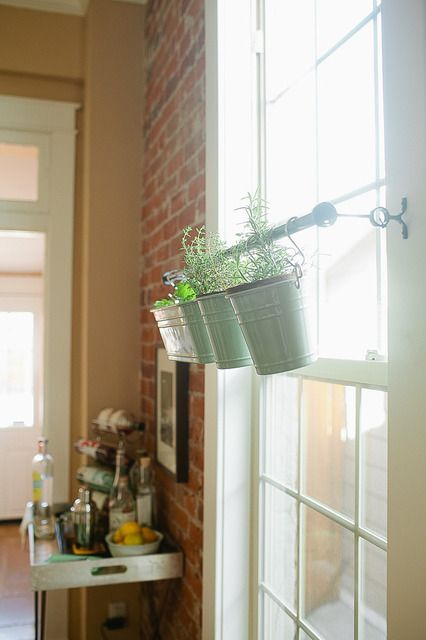 This is a great idea! Using a rod across a window for hanging plants! Not only does it provide light, it prevents from cluttering a table or windowsill. These people are my heros.