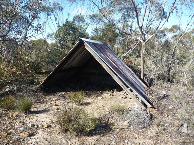 The mallee root shed