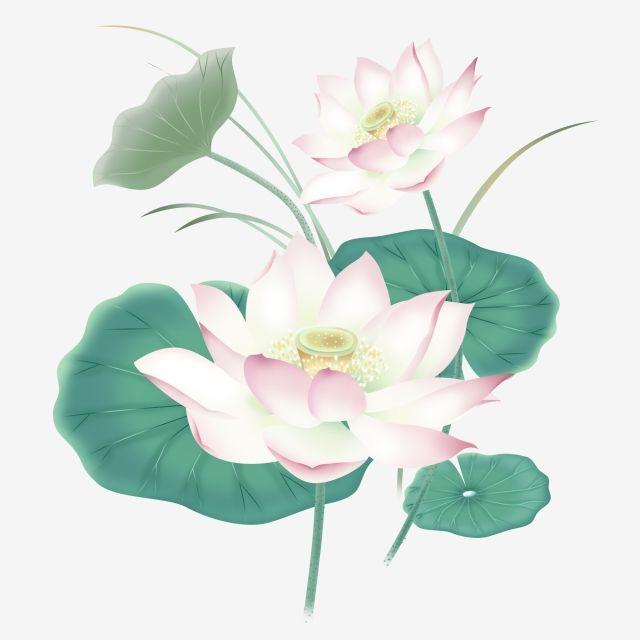 手描きの新鮮なインクのイラスト蓮蓮葉夏の中華風の花 手描き 新鮮な イラスト画像とpsd素材ファイルの無料ダウンロード Pngtree Ink Illustrations Flower Painting Flower Png Images