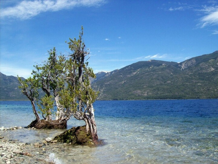 Lago Epuyen Patagonia Argentina