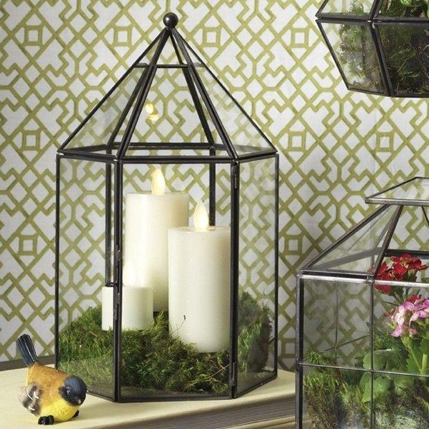 Metal and Glass Terrarium