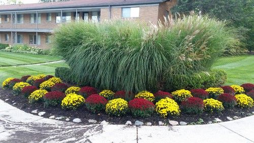 You can't go wrong by incorporating hay-like or long, wispy fronded plants. There's something about that airy feel that naturally invokes the fall feeling without having to change up too much in your garden. Better yet, you can always add smaller flowering plants into the scene to give your landscape some more of that great fall foliage color.