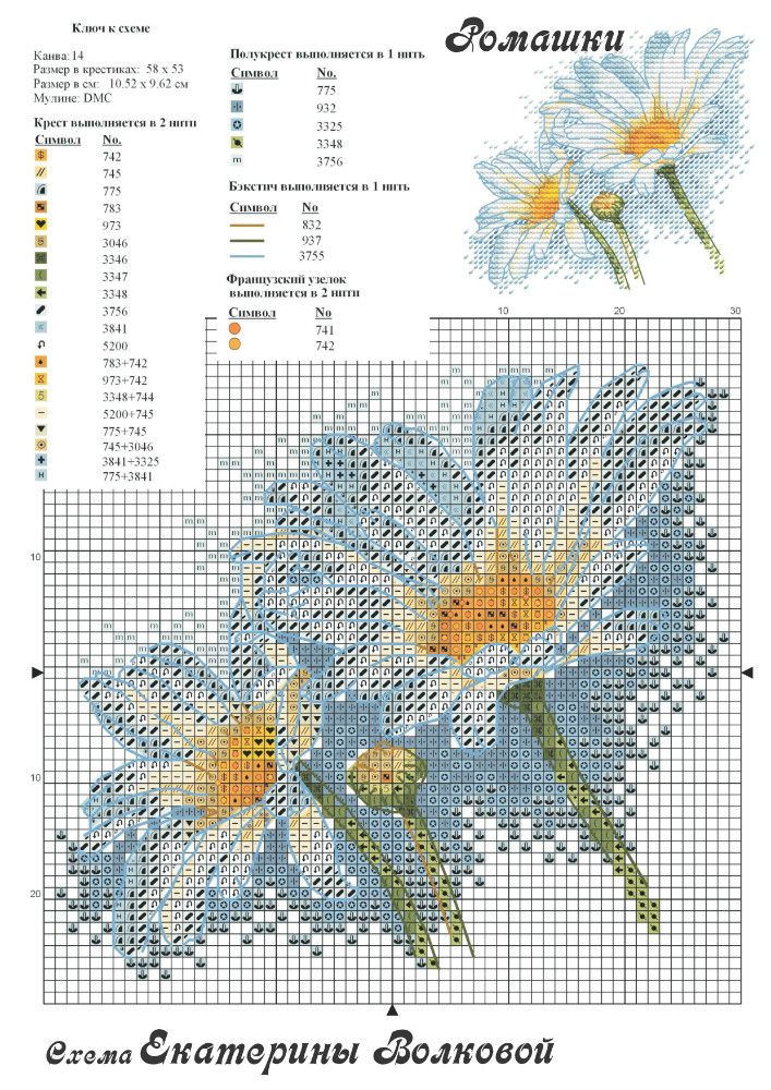 204303-21eda-74529852--u05016.jpg (JPEG Image, 707×1000 pixels)