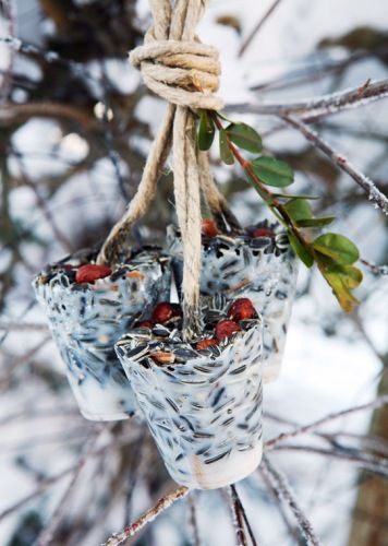 Seed cups for the birds. . .its in Norwegian, but you get the drift. . .Suet, sunflower seeds, cranberries, rope, and a couple Dixie cups!