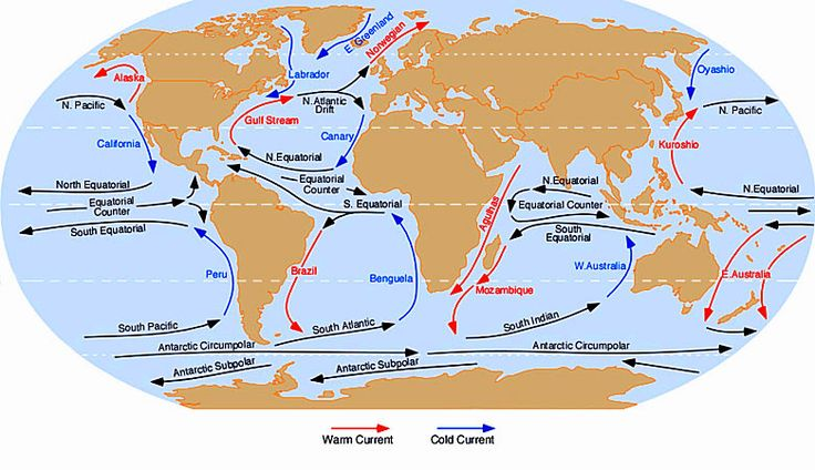 Guide to the world's ocean currents | Weather2Travel.com