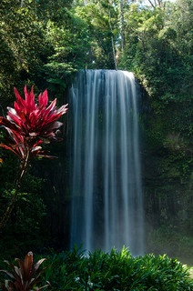 Millaa Millaa Falls on the Cairns Highlands - the most photographed waterfall in Australia.