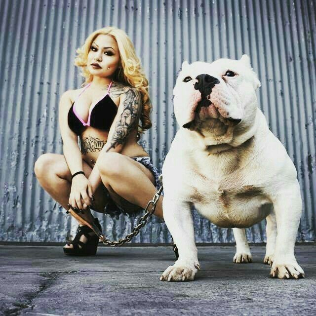 Cholos Cholas Modelos Tattoo Sur Lowriderbike Lowridergirl Lowrider Gangster Homies Lowbike Bully Breeds Dogs Girl And Dog Bully Dog