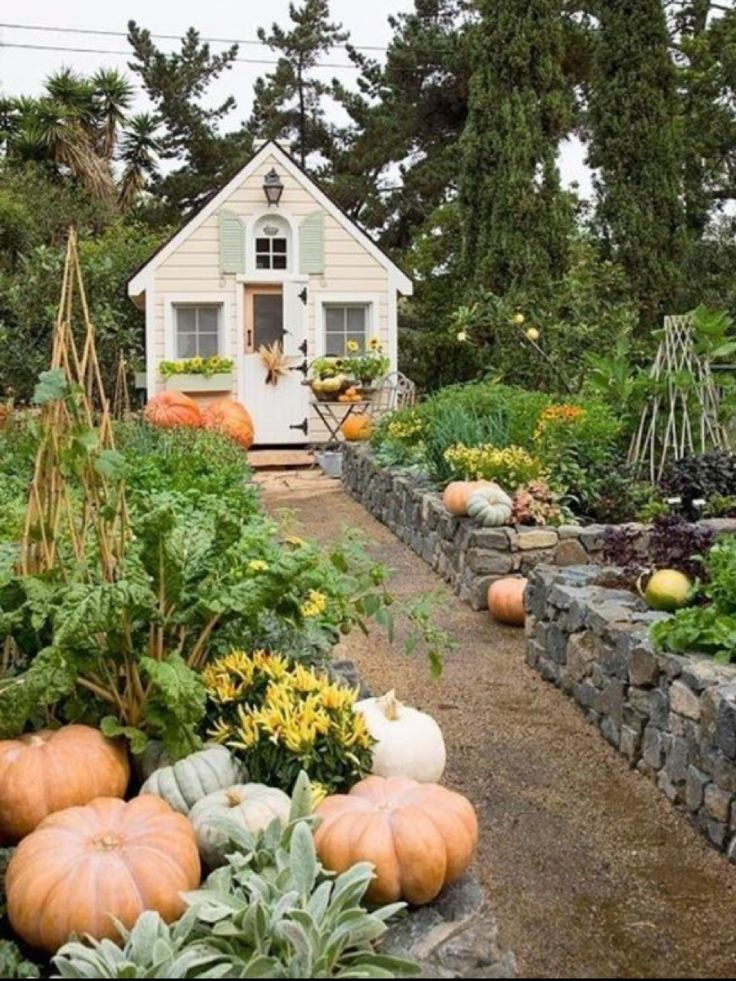 17 best images about my back yard on pinterest gardens for Garden shed gin