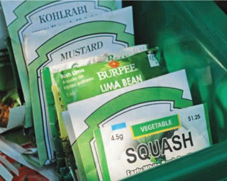 Working with seed packets? - Agriculture