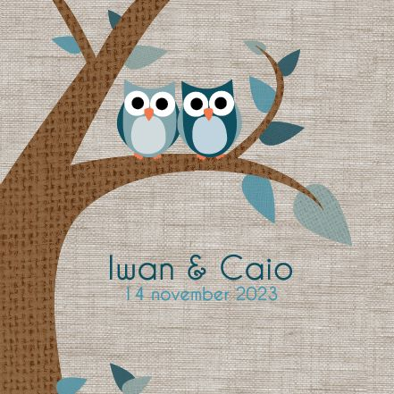 www.hetuilennestje.nl - Het Uilennestje geboortekaartjes tweeling Iwan & Caio Tweeling, uil, boom, familie, blaadjes.