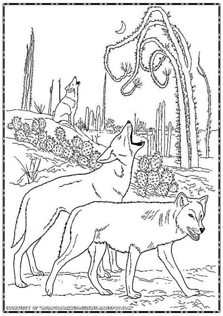 Free Wolf Coloring Pages For Adults Is Available Here To Downloads And Print Out Currently