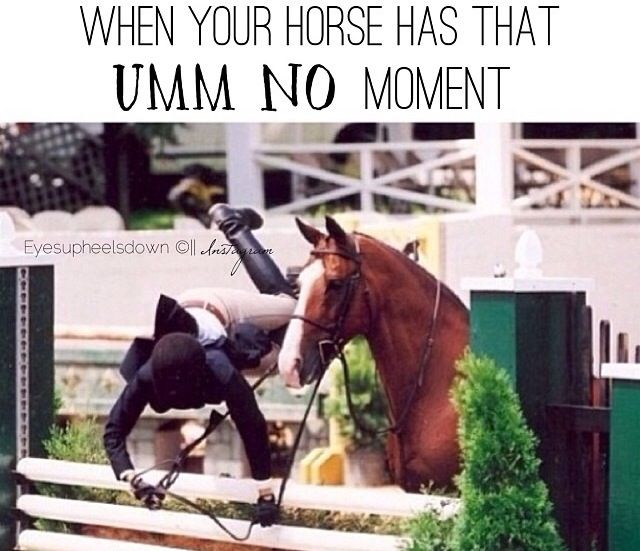"Equestrian problems - LOL the horse in this picture is just like ""See ya!"""