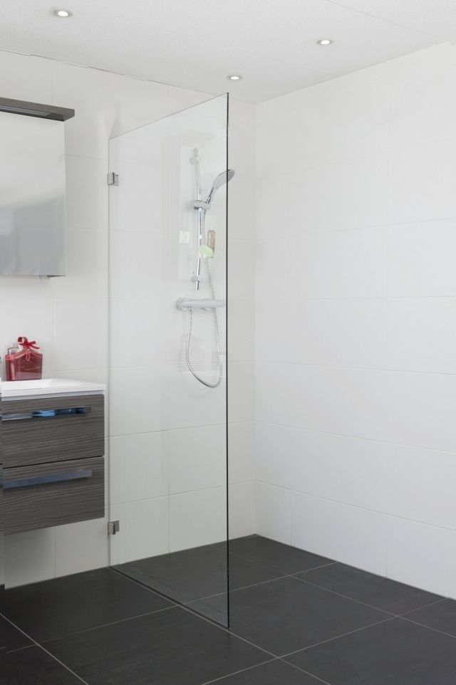 douche à l'italienne et paroi en verre moderne