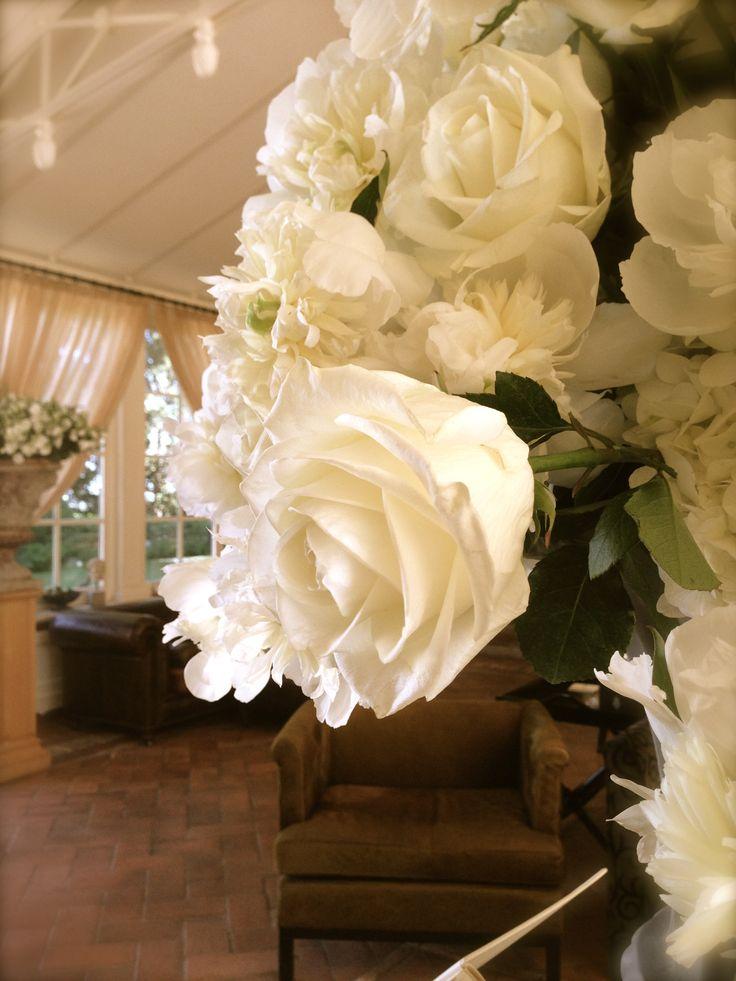 #whiterose