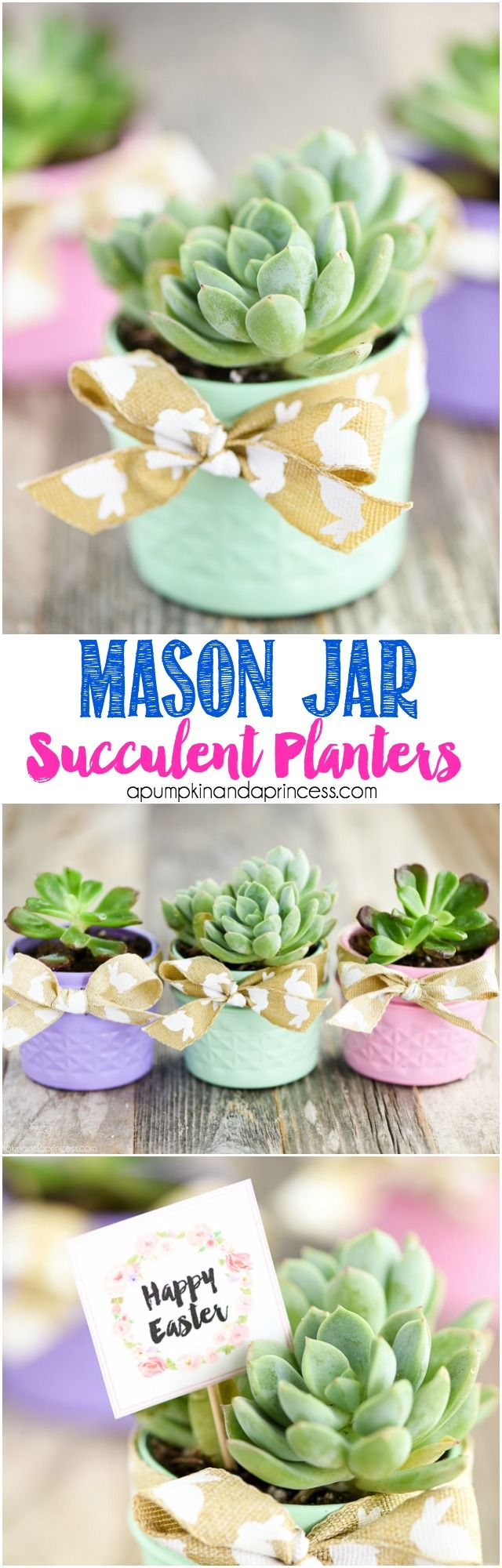 DIY Mason Jar Succulent Planters - turn small mason jars into succulent planters with a little paint, soil, and succulents. Add a ribbon and FREE printable Easter tag to give as gifts.