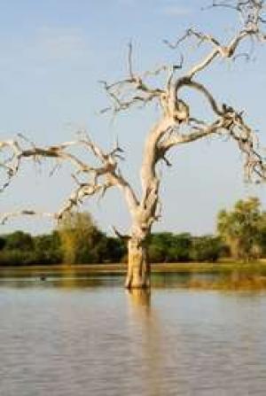 Mozambique rammes af flere naturkatastrofer | Videnskab.dk