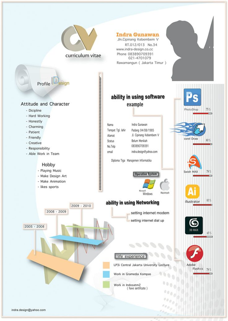 77 best Infographic CVs images on Pinterest Graphics, Resume - 3d artist resume