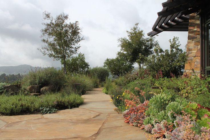 Stone path floats through a sea of plants Reclamation of Native Oak Ridge, Design David Thorne LA, Oakland CA
