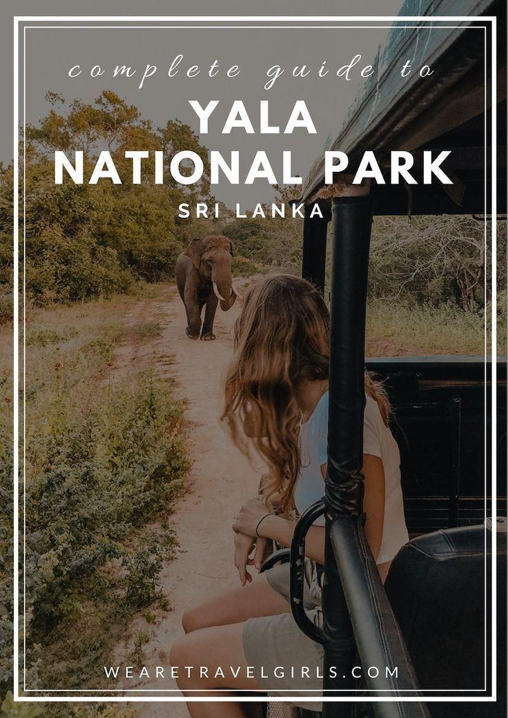 COMPLETE GUIDE TO YALA NATIONAL PARK SRI LANKA