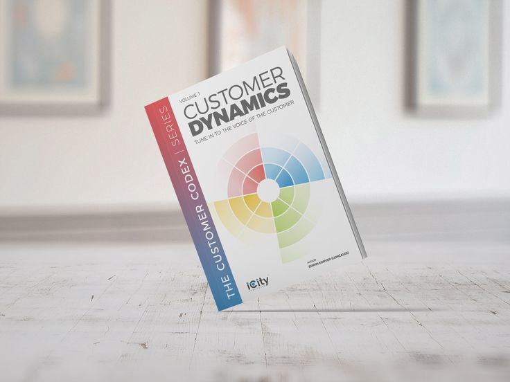 Customer DYNAMICS™ is the first book in the Customer CODEX™ series, covering all facets of customer interactions, customer relationships and customer behavior.