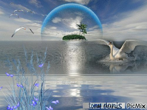 TROPICAL BLUE original backgrounds, painting,digital art by tonydanis GREECE HELLAS fantasy fantasia 3d animation imagination gif peace love