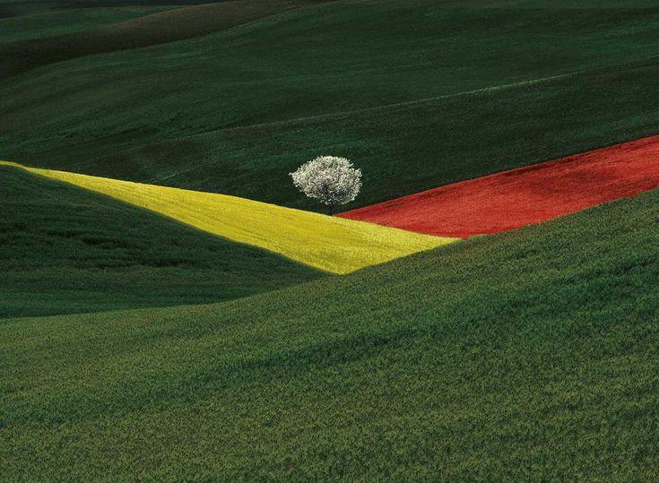 Franco Fontana, Imaginary Landscape, Puglia, 1995
