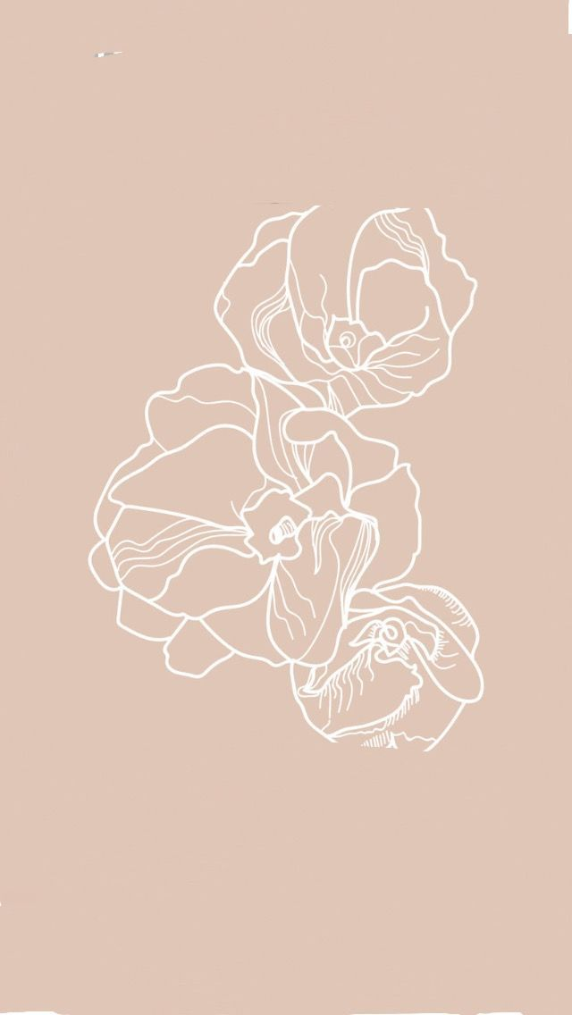 Beautiful floral illustration and color pairing #Florals #GraphicDesign #Illustr… – Kara Layne & Co.