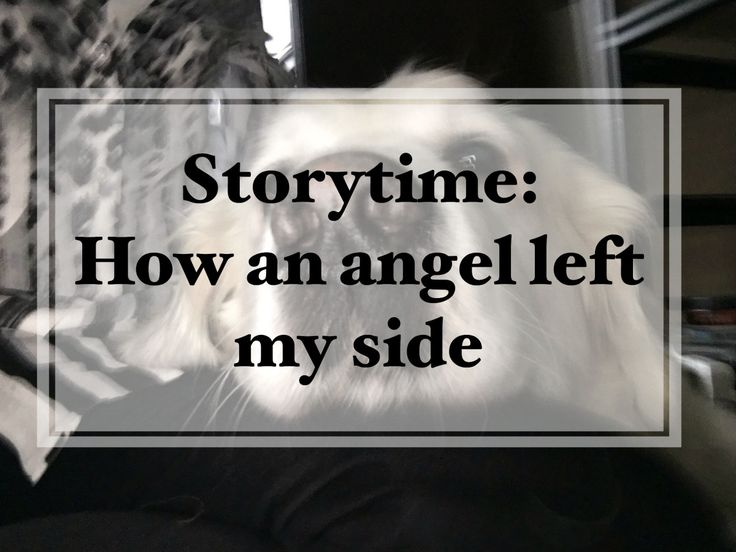 Storytime: How an angel left my side