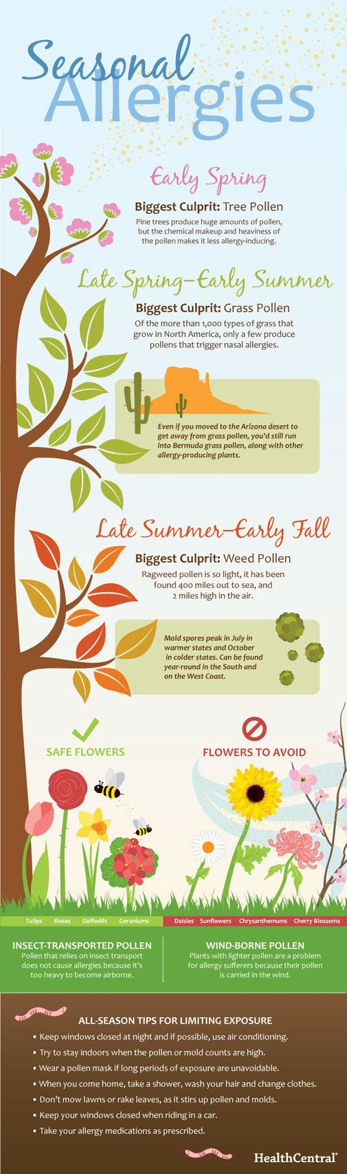 (Infographic) Seasonal Allergies - Seasonal - Allergy