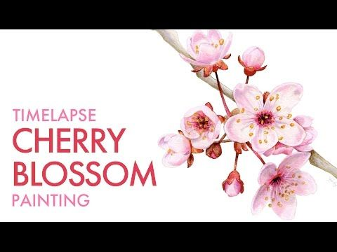 Painting Cherry Blossoms   Time-lapse with voice-over - YouTube