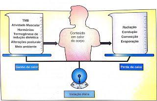 Aplicações Práticas em Fisiologia do Exercício: TERMORREGULAÇÃO
