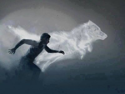 running with the wolf spirit