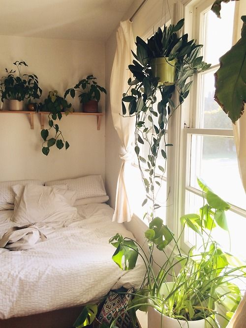 architecture home interior design bedroom sleeping nook reading white plants windows romantic bohemian