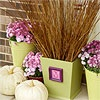 Monogrammed Planter    Make your house feel like a home with planters that call out your family's initial. This planter is actually a painted wooden trash can. The small frame, featuring a clip art letter, is attached with hot glue. A smattering of mums and pumpkins, plus a high-reaching collection of twigs, complete the fall feel.